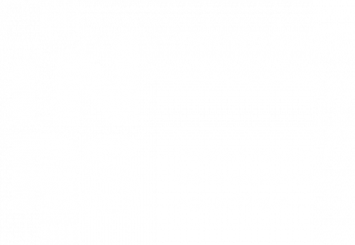 INRS Foundation